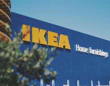 IKEA ponownie otwarta, tłumy przed jednym ze sklepów. Właściciele...