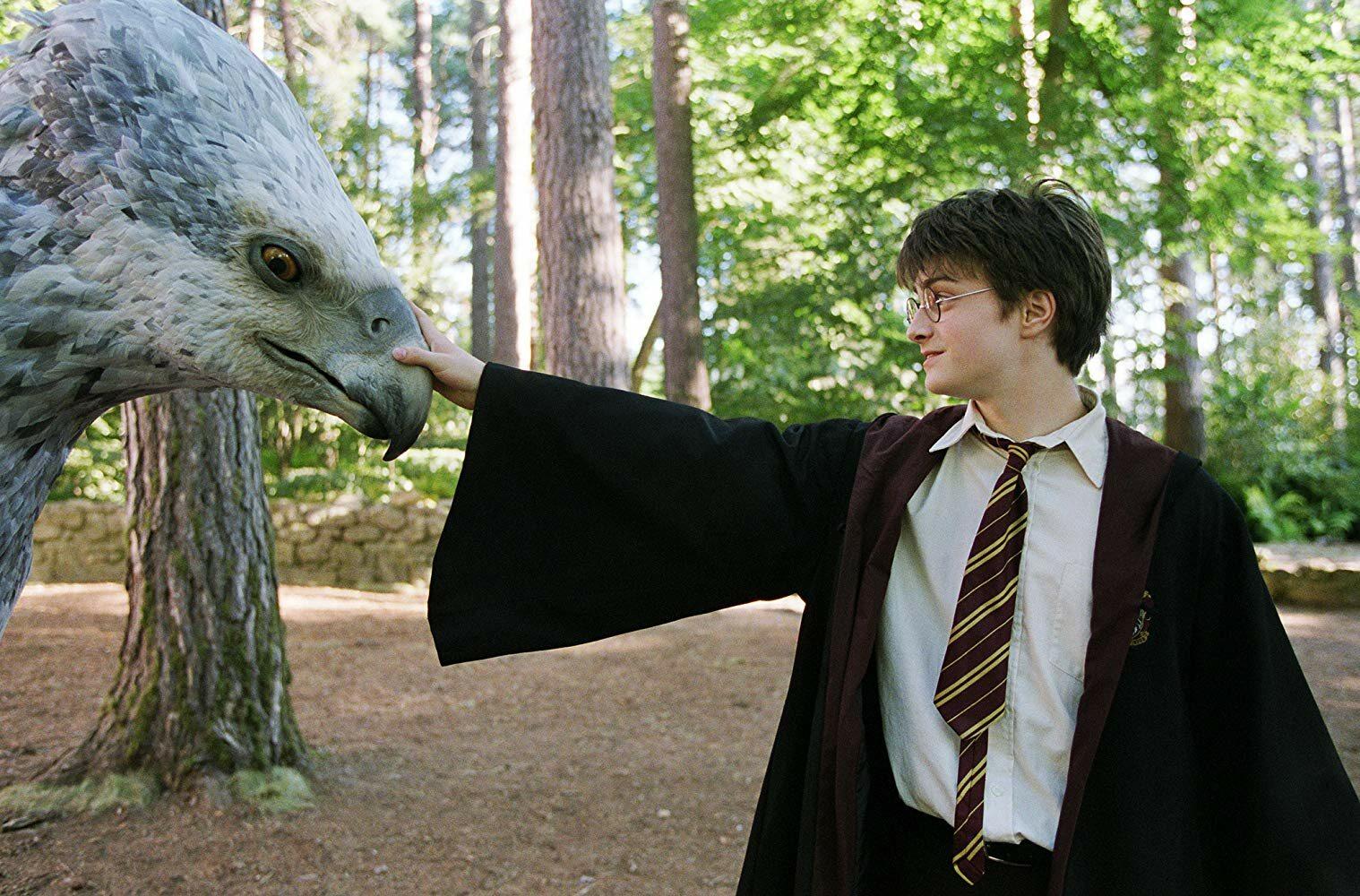 Zacznijmy od czegoś prostego. Do którego domu w Hogwarcie należał Harry Potter?