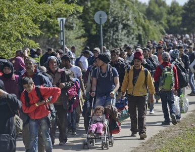Sondaż: Ponad połowa Polaków chce referendum w sprawie przyjmowania...