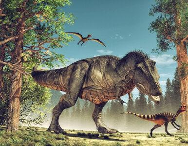 Dinozaury żyły na Ziemi, gdy ta była po zupełnie innej stronie galaktyki