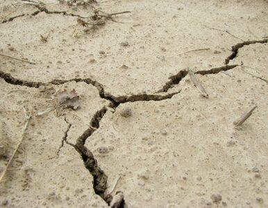Silne trzęsienie ziemi. Już ponad 500 zabitych