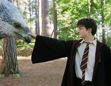 """Powtórka z wiedzy o """"Harrym Potterze"""". Pamiętasz te cytaty z filmów?"""