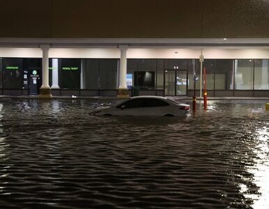 Stan wyjątkowy w Nowym Jorku po zalaniu miasta. Nagrania robią wrażenie