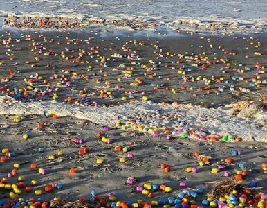 W wyniku sztormu morze wyrzuciło na brzeg tysiące plastikowych jajek