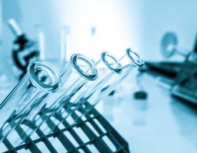 Polscy naukowcy chcą sprawdzić, jak koronawirus zachowuje się w komórkach