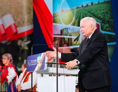 PiS przedstawiło program dla wsi. Kaczyński: Żaden przeciwnik, sam...