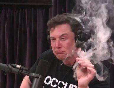 """Elon Musk nie ma domu. Został """"bezdomnym"""", aby unikać podatków?..."""