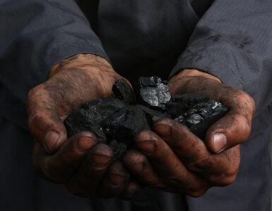 Unilever odejdzie od kopalnego węgla. To rewolucja dla konsumentów i firmy