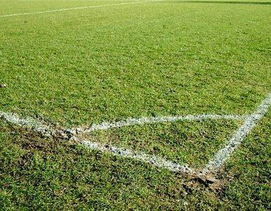 Napastnik piłkarskiej reprezentacji USA trafił do Tottenhamu