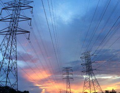 Energia elektryczna – ile zapłacimy za prąd w 2020 roku?