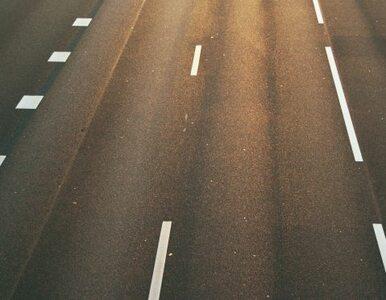 Zwężenie jezdni na Trasie AK. Ruch odbywa się płynnie