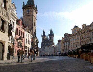 Tropiki już w Pradze