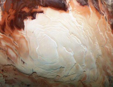 Nowe odkrycie na Marsie. W podobnych miejscach na Ziemi istnieje życie