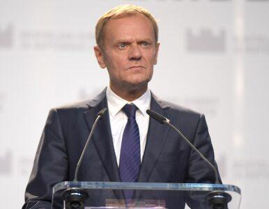 Rabiej: Petru nie zachowa się jak Tusk, który zwolnił geja przed kampanią