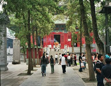 Klasztor Shaolin szuka PR-owca. Chcą promować się w...
