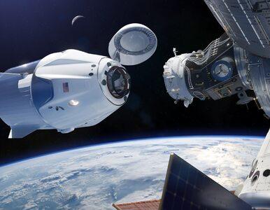 Myszy na Międzynarodowej Stacji Kosmicznej. Historyczny moment dla SpaceX