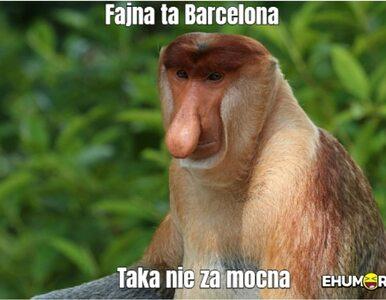 Barcelona upokorzona przez Bayern. Te MEMY to najlepszy komentarz do...