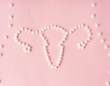 Bezpłatne tabletki antykoncepcyjne dla młodych kobiet. Rewolucja we...