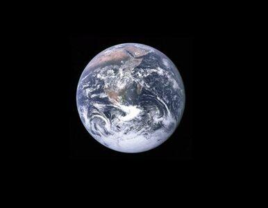 Nieznane formy życia odkryte na Ziemi