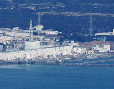 Radioaktywna woda w pobliżu Fukushimy. Norma przekroczona 10 tysięcy razy