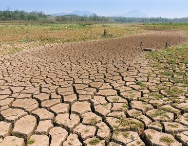 KRASP apeluje o pilne działania w odpowiedzi na kryzys klimatyczny