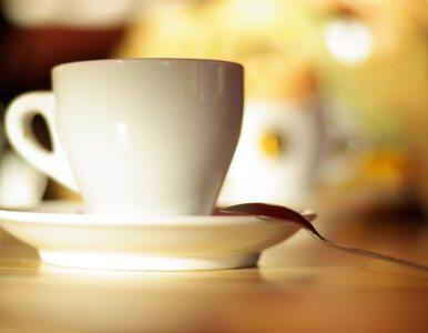 Jak kofeina wpływa na mózg? SWPS nagradza studentów