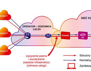DDoS rośnie w siłę  jak możemy się bronić?