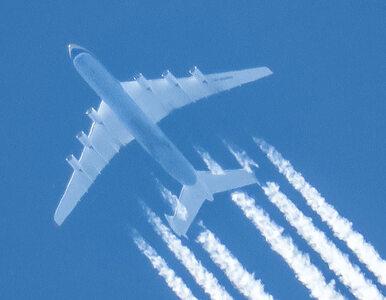 Czy środkowe miejsca w samolocie powinny być puste? Naukowcy zbadali...