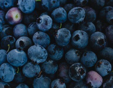 Jagody mają liczne właściwości zdrowotne. Dlaczego warto je jeść i które...