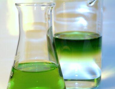 Chemikalia pod Koszalinem wybuchają. Nie ma pieniędzy na ich usunięcie