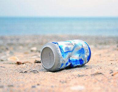 """""""Chcemy posprzątać ludziom w głowie"""". Akcja sprzątania Bałtyku ruszyła"""