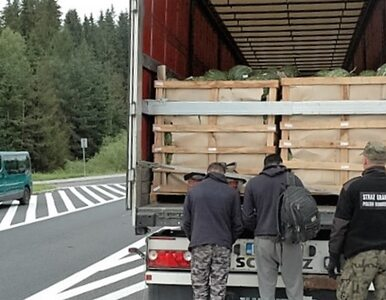 Afgańczycy wpadli na polskiej granicy. Ukryli się w ciężarówce z arbuzami