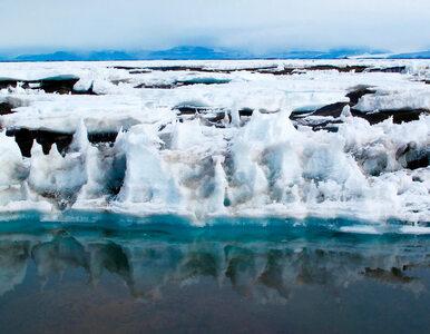 Z Antarktydy może oderwać się lód o powierzchni Hiszpanii. Naukowcy biją...