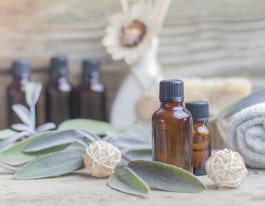 Wyjątkowe właściwości olejku z drzewa herbacianego