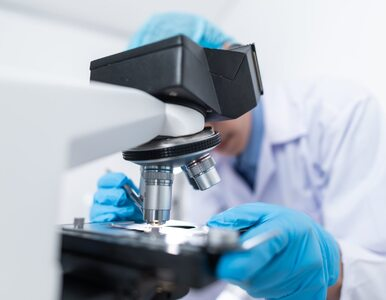 Eksperci potwierdzają: Afrykańska odmiana koronawirusa jest bardziej...