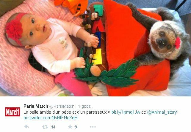 fot. screenshot Twitter