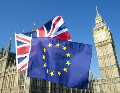 Brytyjski rząd wyłożył się na brexit