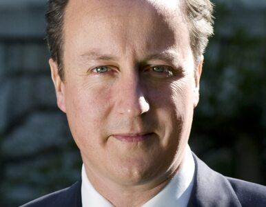 Wpadka Camerona. Śledził wpisy ekskluzywnej agencji towarzyskiej