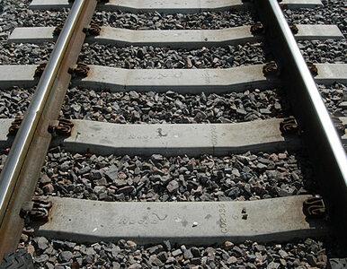 Burza pokrzyżowała szyki pociągom