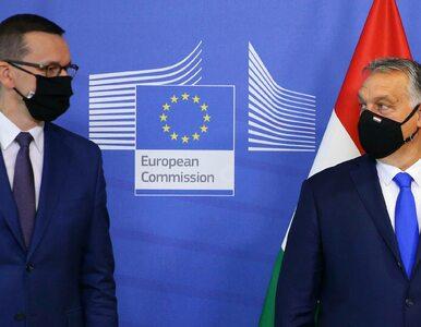 Spotkanie Orban - Morawiecki. O wecie przy bakłażanie, rybie, polędwicy,...