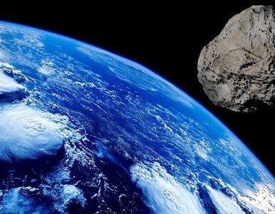 Takiego organizmu szukali naukowcy. Potrafi przeżyć, jedząc... meteoryt