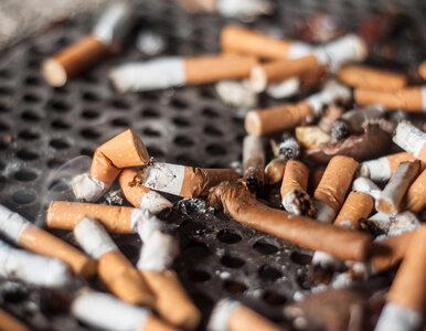 Szok! Palenie papierosów sprzyja tyciu