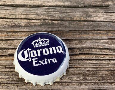 Co wspólnego ma koronawirus i piwo Corona? Nic, ale ogromna liczba...