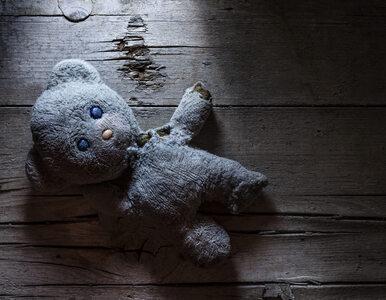 Zaginęła jako 3-latka. Rodzice odnaleźli ją po 24 latach poszukiwań