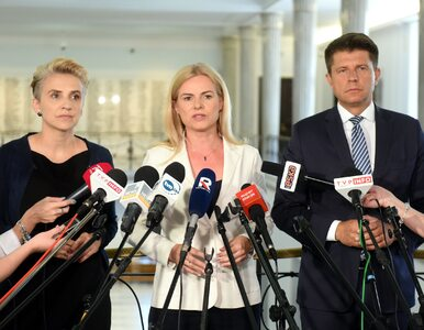 Petru, Schmidt i Scheuring-Wielgus z zakazem wjazdu na teren Sejmu