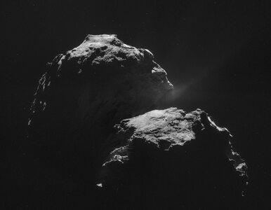 """Niezwykłe odkrycie """"Philae"""". Na komecie znaleziono związki organiczne"""