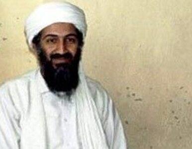 Zabiliśmy bin Ladena, zabiliśmy Kadafiego - newsy roku 2011