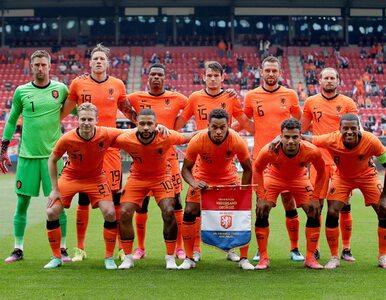 Heroiczny bój i piękne gole. Holandia zwycięża z Ukrainą w meczu grupy C...