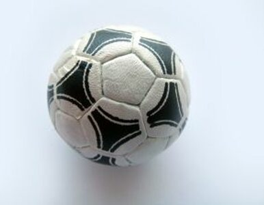 Rząd: zmiany w PZPN dopiero po Euro 2012