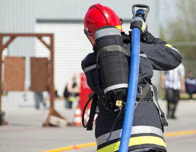 Katowice. Rozszczelniony gazociąg, ewakuowano 80 osób